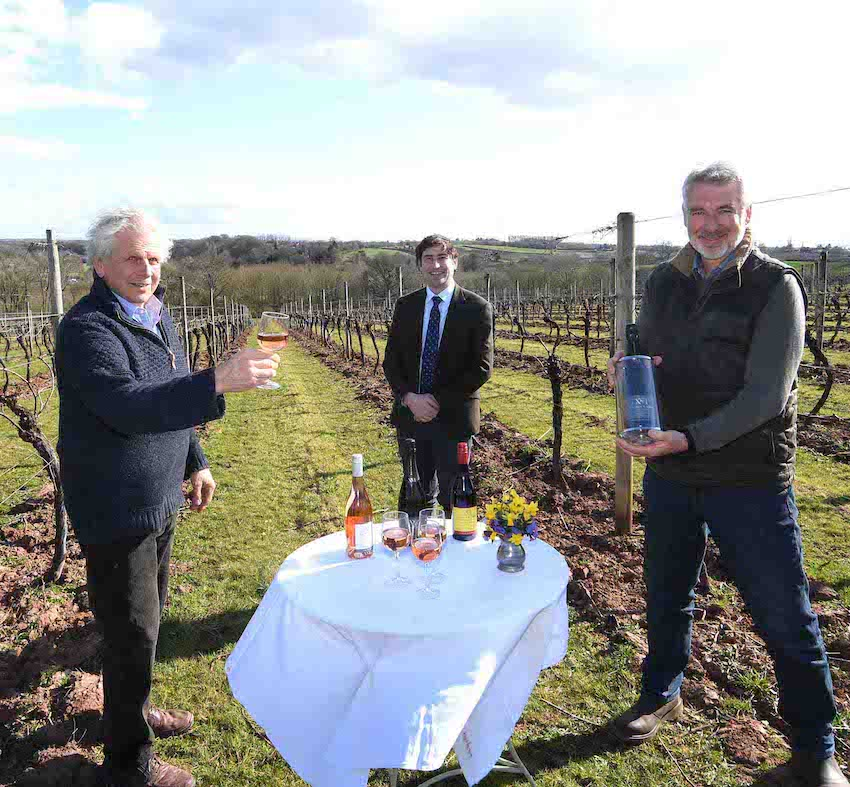 Business & Innovation - Worcestershire Vineyard Hits The Market